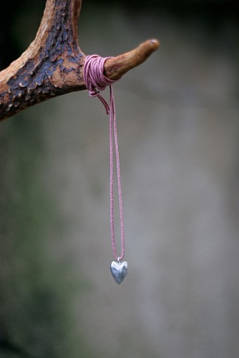 Stine-Heart-340x509